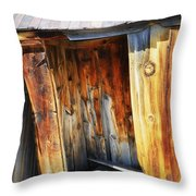 Bodie Decaying Privy Throw Pillow