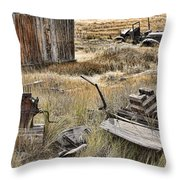 Bodie Throw Pillow