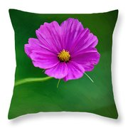 Bohemian Garden Magenta Throw Pillow