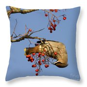 Bohemian Waxwing Eating Rowan Berries Throw Pillow