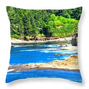 Boiler Bay 17160 Throw Pillow