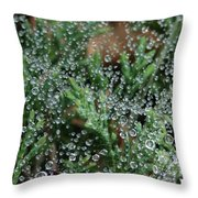 Boiling Point Throw Pillow
