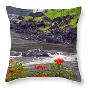 Boiling Pots State Park Throw Pillow