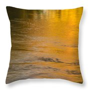 Boise River Autumn Abstract Throw Pillow