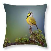 Bokmakierie Bird - Telophorus Zeylonus Throw Pillow by Johan Swanepoel