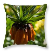 Bold And Showy Orange Crown Imperial Flower  Throw Pillow