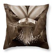 Bold Iris Sepia Throw Pillow