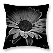 Bold Monochrome Daisy Throw Pillow