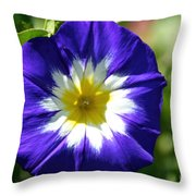 Boldly Beautiful Throw Pillow