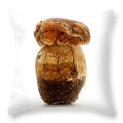Boletus Edulis Throw Pillow
