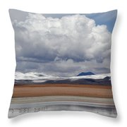 Bolivia 6 Throw Pillow