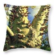 Bombacaceae - Floss Silk Tree - Chorisia Speciosa Hawaii Throw Pillow