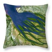 Bombetoka Bay Madagascar Throw Pillow by Adam Romanowicz
