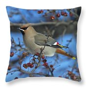 Bombycilla Garrulus... Throw Pillow