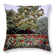 Bon Air Park Throw Pillow