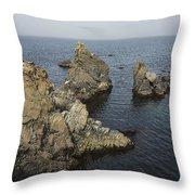 Bonavista Rocks Throw Pillow