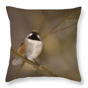 Bonding Boreal Throw Pillow