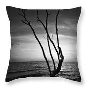 Bonita Beach Tree Black And White Throw Pillow
