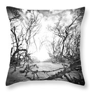 Bonita Beach Walkway Throw Pillow