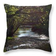 Bonne Femme Creek Throw Pillow