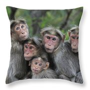 Bonnet Macaques Huddling Western Ghats Throw Pillow