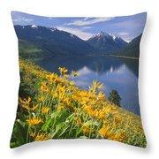 M-05921-bonneville Mountain Reflected In Wallow Lake Throw Pillow