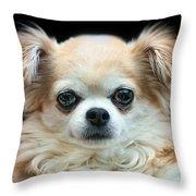 Bonnie Throw Pillow