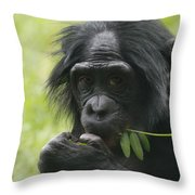 Bonobo Eating Throw Pillow