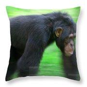 Bonobo Pan Paniscus Knuckle-walking Throw Pillow