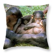 Bonobos Throw Pillow