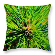 Bonzi Pine Throw Pillow