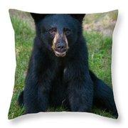 Boo-boo The Little Black Bear Cub Throw Pillow