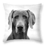 Published Book Cover Of Quotable Dogs  Throw Pillow