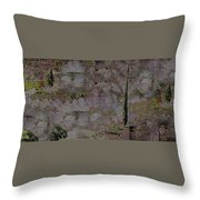 Blooming  Almonds At Night Throw Pillow
