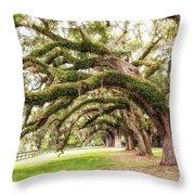 Boones Oaks Throw Pillow