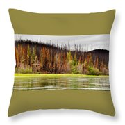 Boreal Forest At Yukon River Destroyed By Fire Throw Pillow