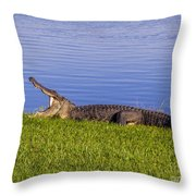 Bored And Hungry Throw Pillow