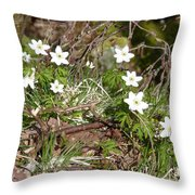 Born Of Snow Throw Pillow