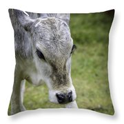 Born To Flirt Throw Pillow