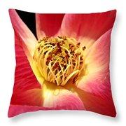 Borrowed Rose Throw Pillow