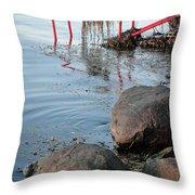 Borstahusen Landskrona Se '13 08 Throw Pillow