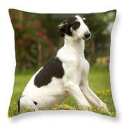 Borzoi Puppy Throw Pillow