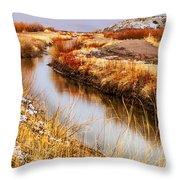Bosque Canal Throw Pillow