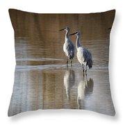 Bosque Del Apache Cranes Throw Pillow