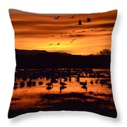 Bosque Del Apache Sunrise 1 Throw Pillow