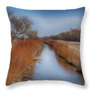 Bosque Del Apache Wetlands- New Mexico Throw Pillow
