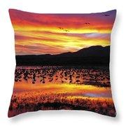Bosque Sunset II Throw Pillow