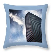 Boston Monolith Throw Pillow