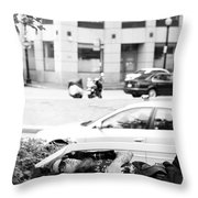 Boston Nap Throw Pillow