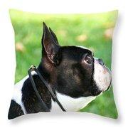 Boston Profile Throw Pillow